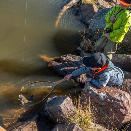 kids-netting-utah-grayling