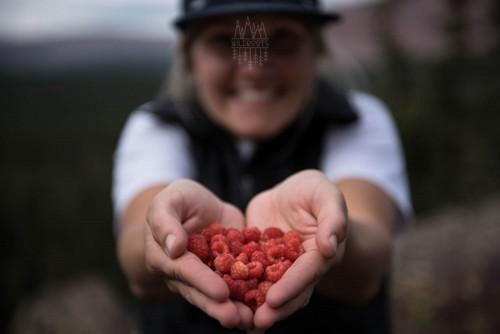 utah-wild-raspberries